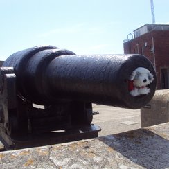 Bach in a cannon