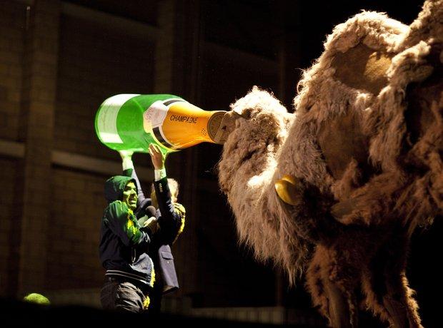 Stockhausen camel