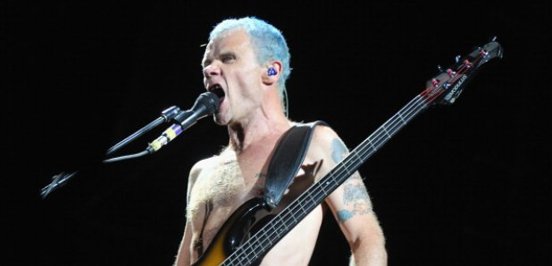 flea chilli peppers