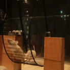 mice playing classical music