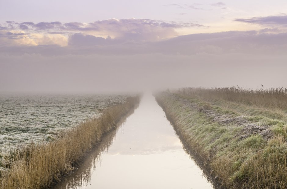 Norfolk broads fens