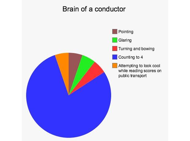 musician brains pie chart