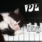 Cat piano relaxing